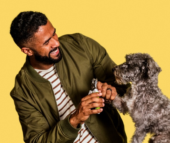 Man with yellow background with small dog
